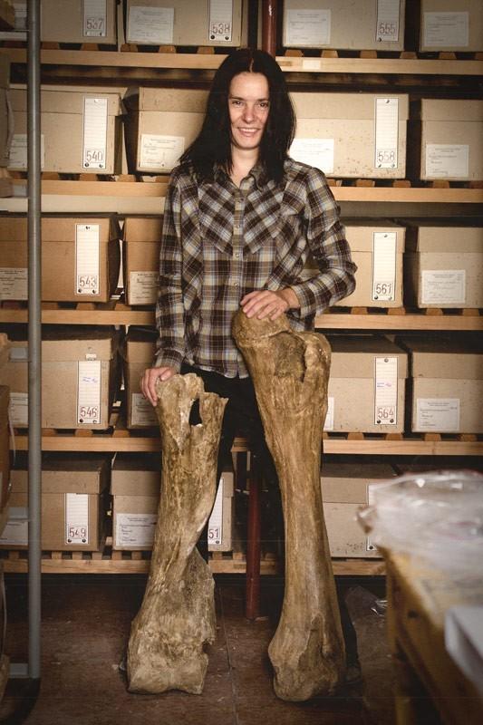 Pisarz jest jak paleontolog